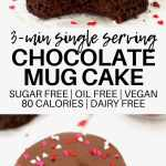 Single Serving Chocolate Mug Cake Vegan Low Calorie Sugar Free