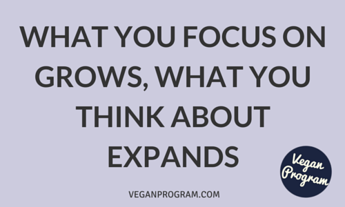 What you focus on grows, what you think about expands veganprogram