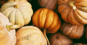 Vegan Thanksgiving survival tips and recipes