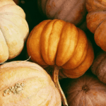 Vegan Thanksgiving: Mission Possible! Great Vegan Thanksgiving Tips for Successful Holidays