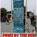 Pawz by the Sea 5k Recap, Plus How I Managed to Beat My Anxiety
