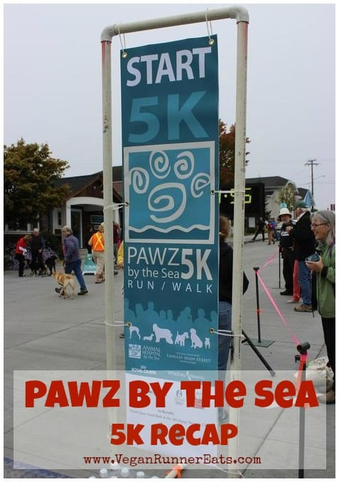 Pawz by the Sea 5k Recap