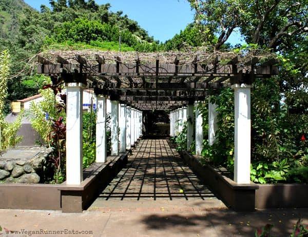 Kepaniwai Heritage Gardens Maui Hawaii