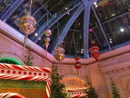 mov_Bellagio_conservatory_christmas_2017_002b041217