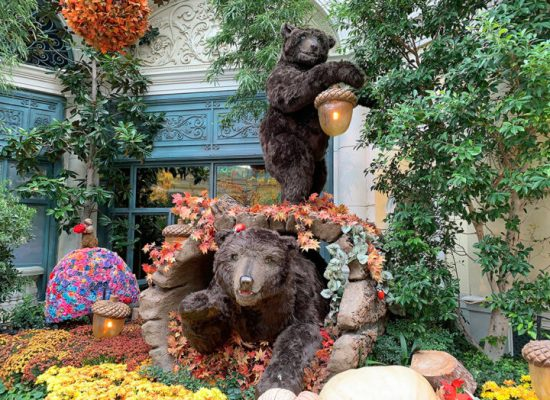 https://www.bellagio.com/en/entertainment/conservatory-botanical-garden.html