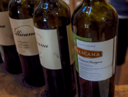 2004 Villicana Cabernet Sauvignon