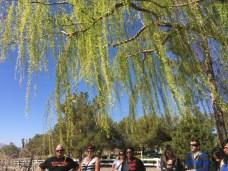 So Nevada Wine Excursion23