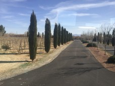 So Nevada Wine Excursion55