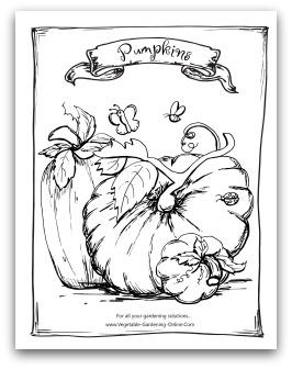 Pumpkin Seed Coloring Pages