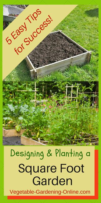 Raised Vegetable Garden Beginners