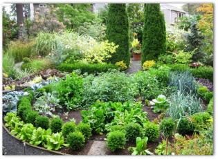 Free Garden Layout Designs