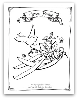 Free Vegetable Garden Coloring Books