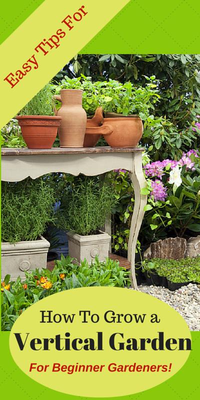 Vegetable Garden Layout Ideas