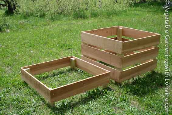 Garden Box Vegetable Layout