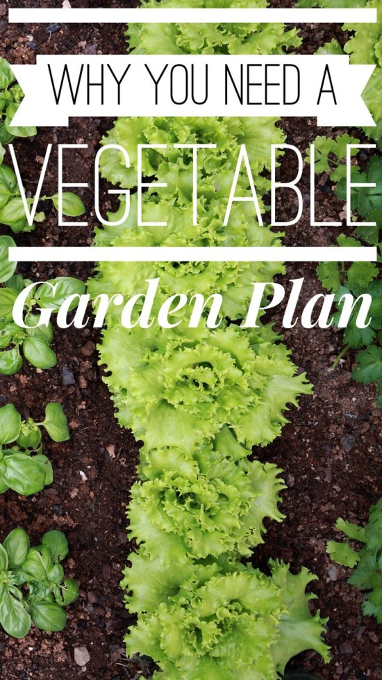 Your vegetable garden needs a plan