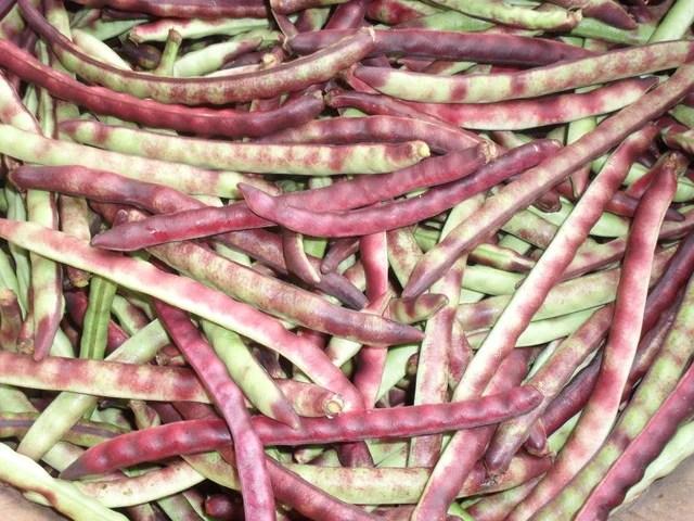 unshelled blackeyed peas