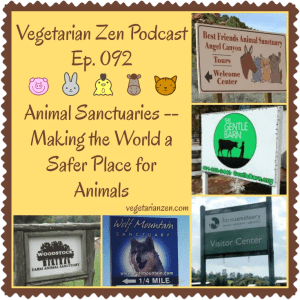Vegetarian Zen Podcast Episode 092 - Animal Sanctuaries http://www.vegetarianzen.com