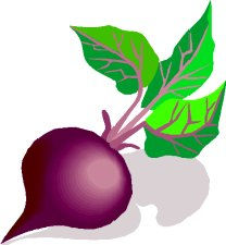 Ensalada de remolacha y zanahoria  Recetas Vegetarianas