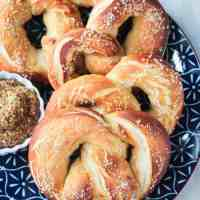 Street Cart Soft Baked Pretzels from NYC Vegan