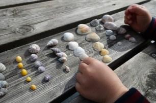 Shells sorting