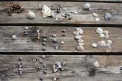 Selecting the shells
