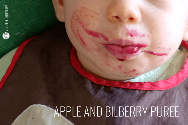 AppleAndBilberryPuree