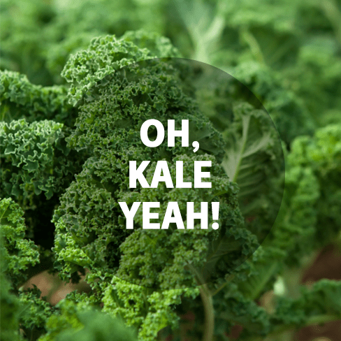 Applause for Kale