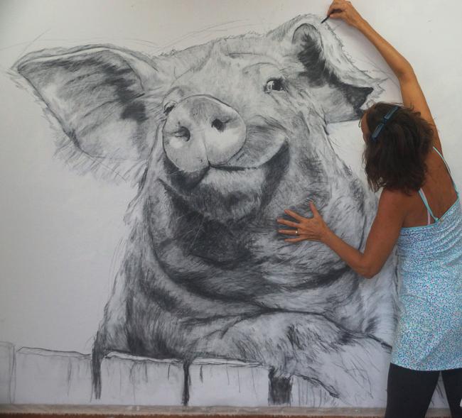 Chantal Pig Drawing