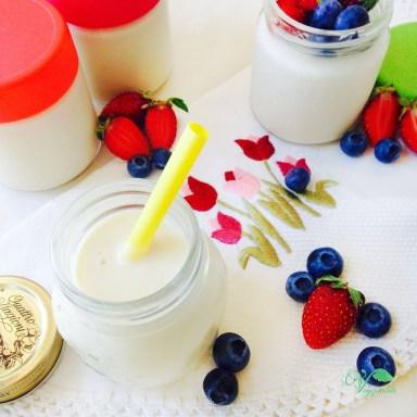 Iogurte de Soja Caseiro5