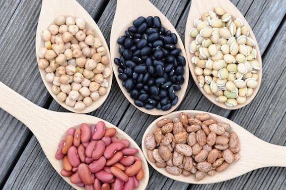 Dried bean varieties