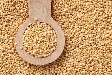 Amaranth - ancient grain