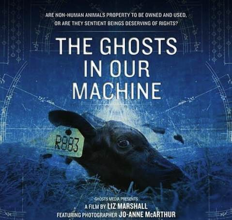 The Ghost In our Machine the movie