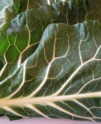 Collard greens whole leaves