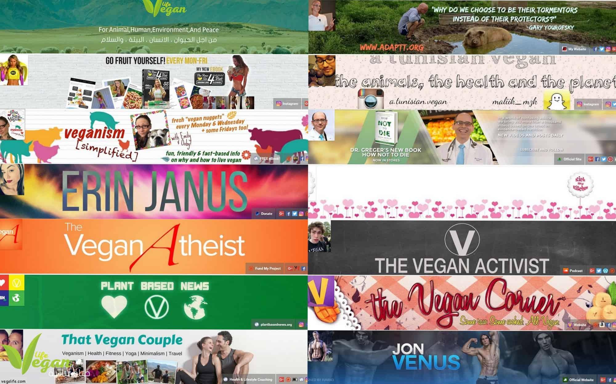 أفضل 16 قناة يوتيوب نباتية