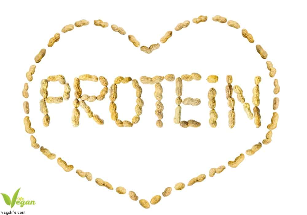 كل ما تحتاج معرفته عن البروتين الحيواني و النباتي ، و ما يجب الإنتباه له عند استهلاكه