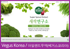 Vegus Korea website