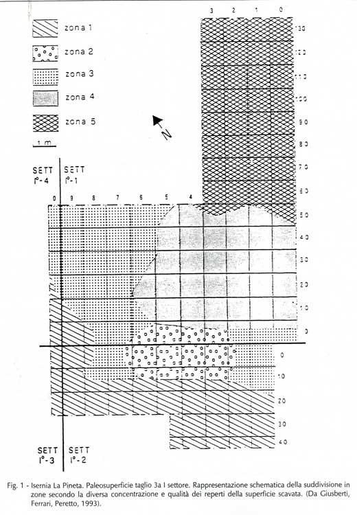 potassio argon datazione archeologia definizione Dating effetto di massa