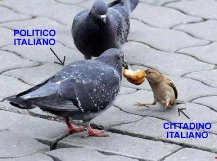 politico italiano-cittadino italiano