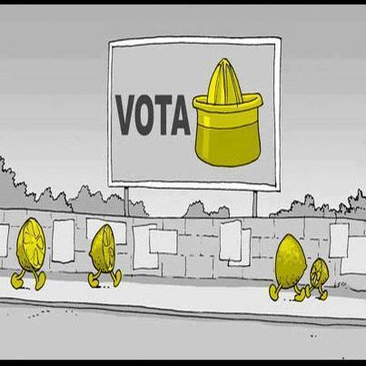 votare-elettore-limone