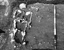 scheletro-oppeano