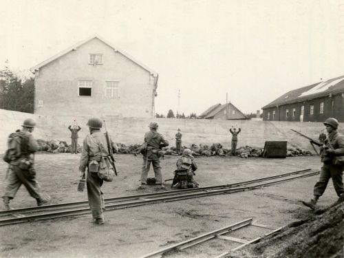 Dachau_execution_coalyard_1945-04-29