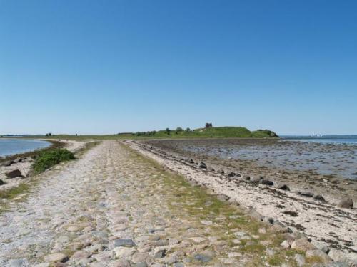Vejdæmningen til Kalø slotsruin