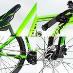 Moma Bikes Peak Vélo VTT 29″, Aluminium, Altus 27V, Freins a Disque Hydraulique Shimano, Suspension Avant avec bloquage Mixte Adulte, Vert, L