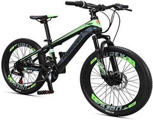 AYHa VTT enfants, 24 à deux vitesses Frein à disque Montagne vélo en acier haute teneur en carbone Garçons Filles Hardtail Mountain Bike,vert,24 pouces