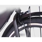 NIUYU Single Speed Vélo, Rétro Léger Vélo de Ville Adulte Unisexe Vélo de Route pour Étudiants Urbain Commuter Environnement de La Ville-D-26pouce