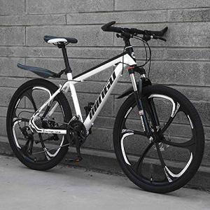 ZLZNX 26 Pouces Vélo De Montagne Frein à Disque VTT Vitesse Variable Hors-Route Plage Motoneige Vélo avec Absorption des Chocs Homme Femme Vélos de Ville,B,21Speed