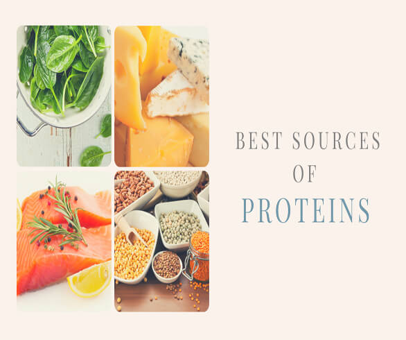 Best Sources of Proteins