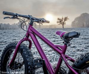 best fat bikes india