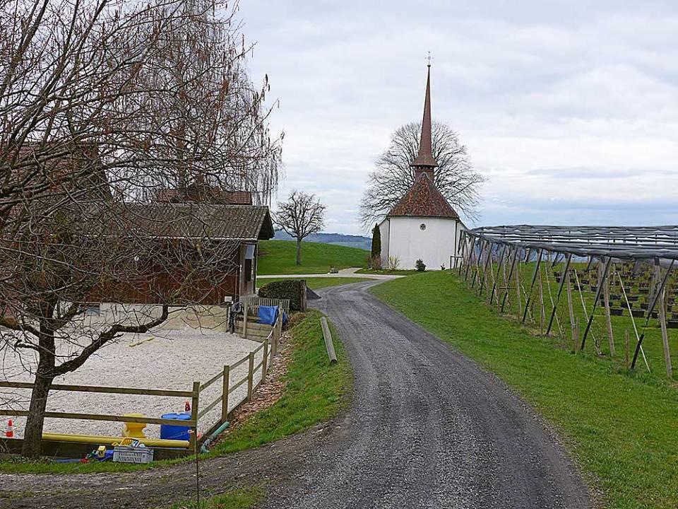Die Kapelle St. Ulrich in Buttisholz ist eines von vielen Kirchlein an der Herzroute im Kanton Luzern. Unbedingt sehenswert! | © 2016 Dominik Thali