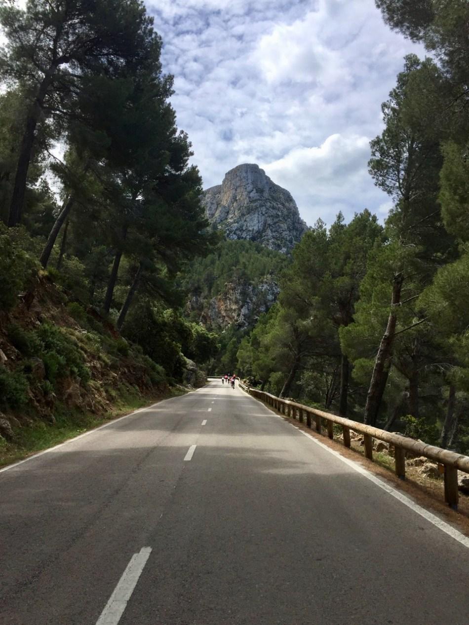 Was soll der ganze Bohai um Mallorca Drei, Eins, Zwei? (312)
